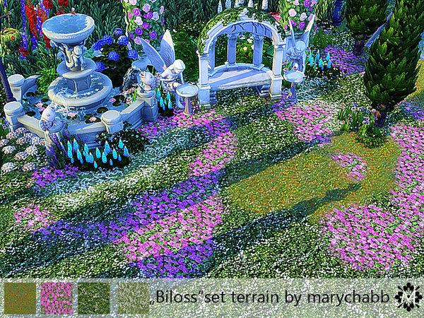 Biloss   Set terrain