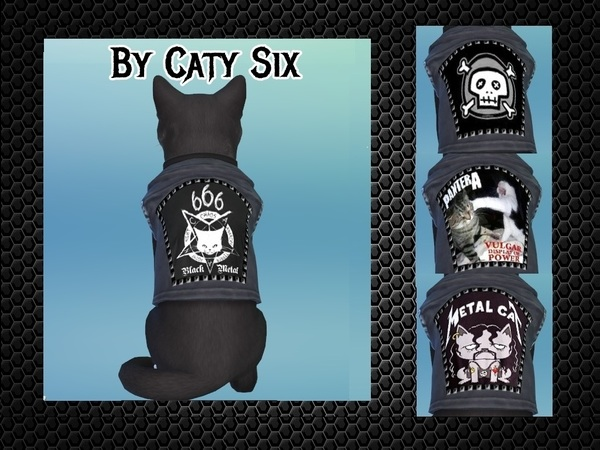 Ready to rock   Cat Clothing