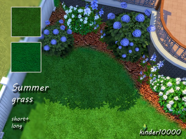 Summer grass set
