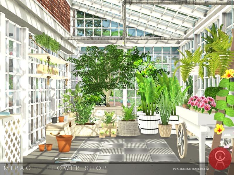 pralinesims 39 miracle flower shop. Black Bedroom Furniture Sets. Home Design Ideas