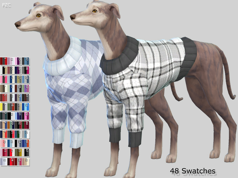 burberry dog collection