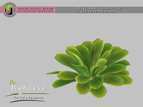 Sims 3 — Rover Plant by NynaeveDesign — For Sims 4 custom content, recolors and addons check out: NynaeveDesign.com