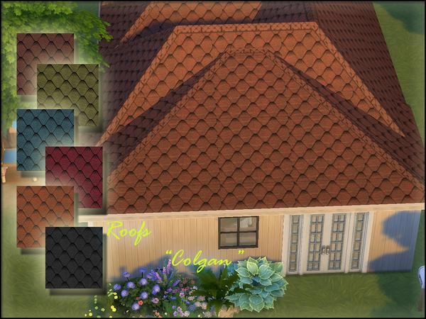 Roofs Colgan