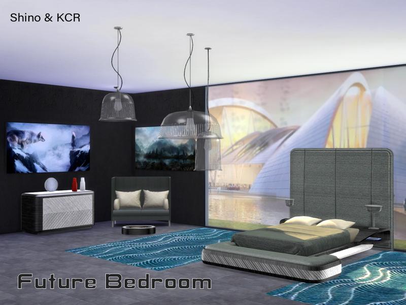 Shinokcr S Bedroom Future