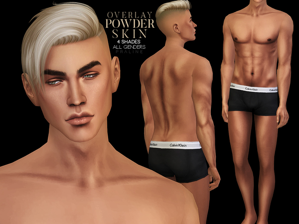 PS Powder Skin Overlay by Pralinesims