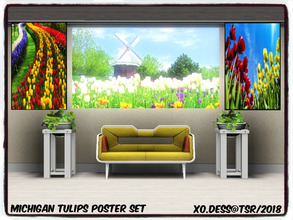 Sims 3 — Dess_Michigan Tulips. ART SET* by Xodess — This set consists of three single file paintings, all based around
