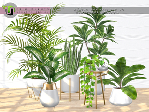 Sims 4 — Erin Plants I by NynaeveDesign — It's official - plants make sims happy! Set includes: Croton Banana Plant Areca