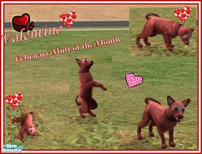 Sims 2 — Mutts of the Month: February by Small Town Sim — Hearts, red, soft and sweet; thats Valentino' & he can't be