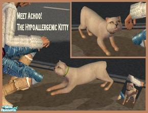 Sims 2 — Achoo! The Hypoallergenic Kitty by Small Town Sim — Are your allergy sensitive Sims feeling left out? Meet
