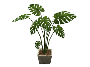 Sims 4 — Kyran Philodendron  by sim_man123 — A large philodendron plant in a stone planter.