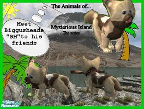 Sims 2 — Animals of Mysterious Island Biggusheade by Small Town Sim — Meet the first member of a series I am working on.