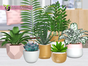 Sims 3 — Breeze Plants by NynaeveDesign — Add life and greenery to any dull corner of your sim's home with these