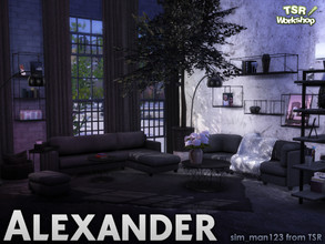 Sims 4 — Alexander Living - Deco by sim_man123 — A collection of various deco items as part of my Alexander Living Room.