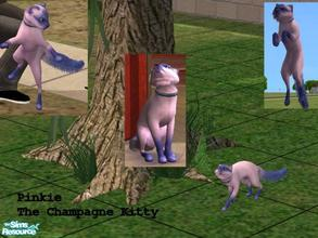 Sims 2 — Champagne Kitty by Small Town Sim — Your elegant, wealthy or affluent Sims looking for the same qualities in a