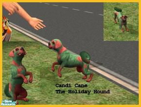 Sims 2 — Holiday Hound by Small Town Sim — Candi Cane the Holiday Hound. She would love to be apart of your family all