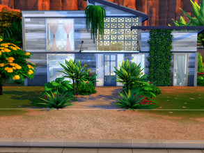 Sims 4 — Single Starter by LJaneP6 — This Single starter home is great for the bachelor/ette or retiree with the green