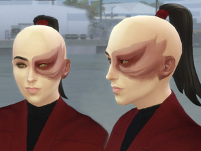 "Sims 4 — Prince Zuko's scars from ""Avatar the last Airbender"" by Velouriah — My version of the face scar of"