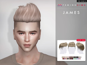 Sims 4 — James ( Hair 144 ) by TsminhSims — New meshes - 25 colors - HQ texture - Custom shadow map, normal map - All