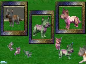 Sims 2 — Animals of Mysterious Island by Small Town Sim — Three more strange pets from Mysterious Island have been found.