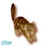 Sims 1 — Sassie by TSR Archive — Sassie hates dogs and loves to play with mice, adopt today for your Sims.