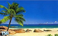 Sims 1 — Beach by mistresscris —