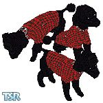 Sims 1 — Punk Poodle by DOT — A Punk Poodle in red plaid with a safety pin on a side pocket, and chains around neck.